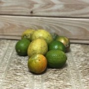 Mix de Limões Orgânicos kg (p/ entregas a partir de terça-feira)