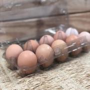 Ovos Vermelhos Dezena (sem Transgênicos nem Antibióticos) - Korin
