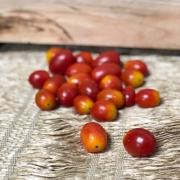 Tomate Cereja Orgânico 250g