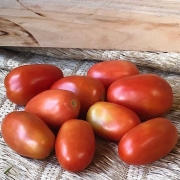 Tomate Italiano Orgânico 500g - 600g