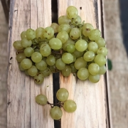 Uva Itália Orgânica 500g