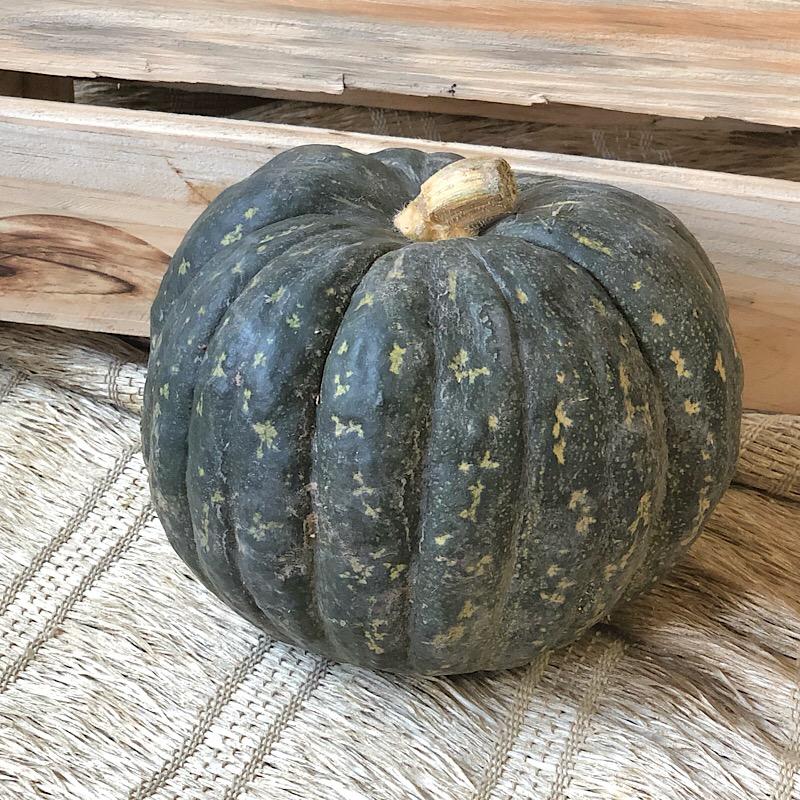 Abóbora Cabotia Orgânica inteira aprox. 1,5kg