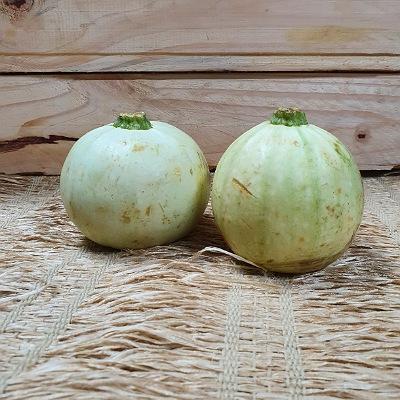 Abobrinha Squash Ball Orgânica kg
