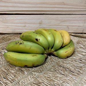 Banana Nanica Orgânica 500g - 700g (p/ entregas a partir de terça-feira)