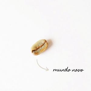 Café Moído Mundo Novo 125g - Um Coffee Co