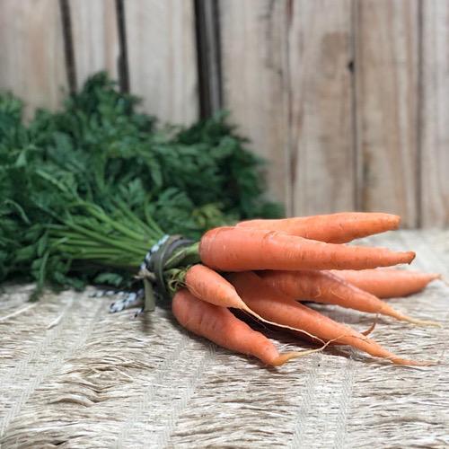Cenoura com Ramas Orgânica Maço
