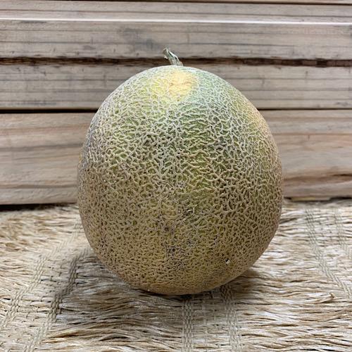 Melão Cantaloup Orgânico
