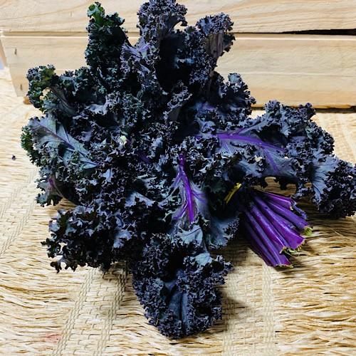 Mini Couve Kale Roxa Orgânica