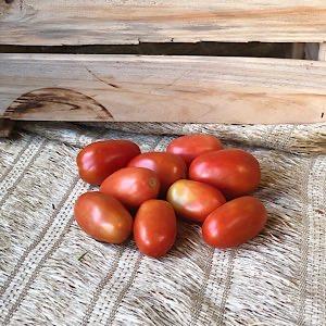Tomatinho San Marzzano Orgânico 250g
