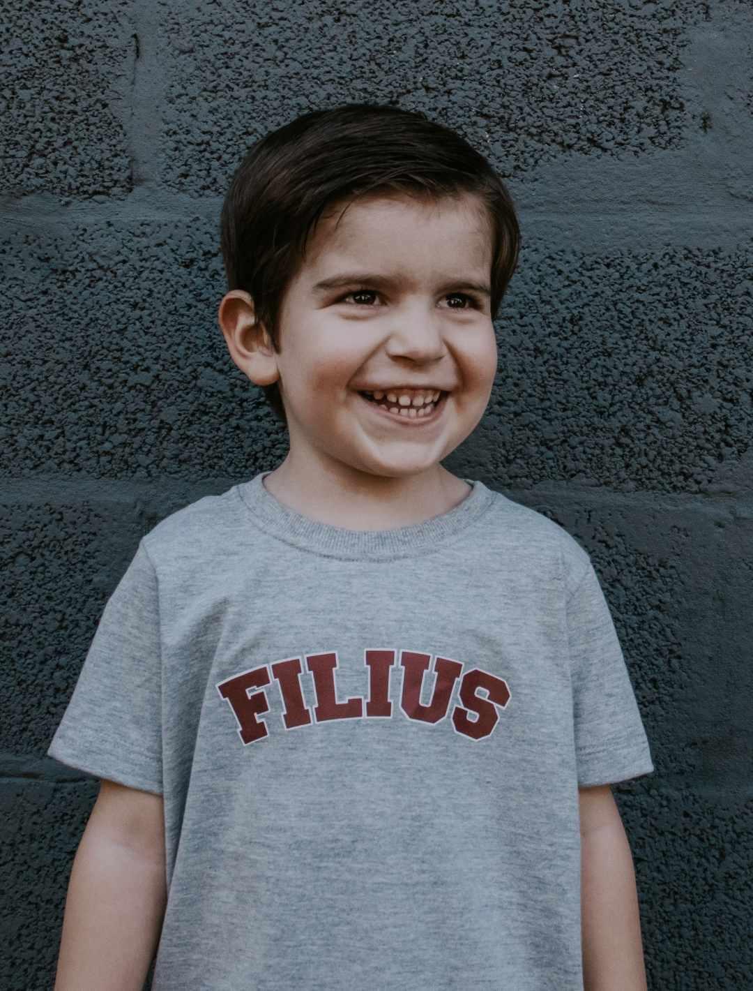 Camiseta Mescla FILIUS