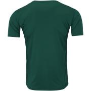 Camisa Palmeiras faixa horizontal