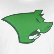 Camisa Palmeiras porco alongada MELTEX