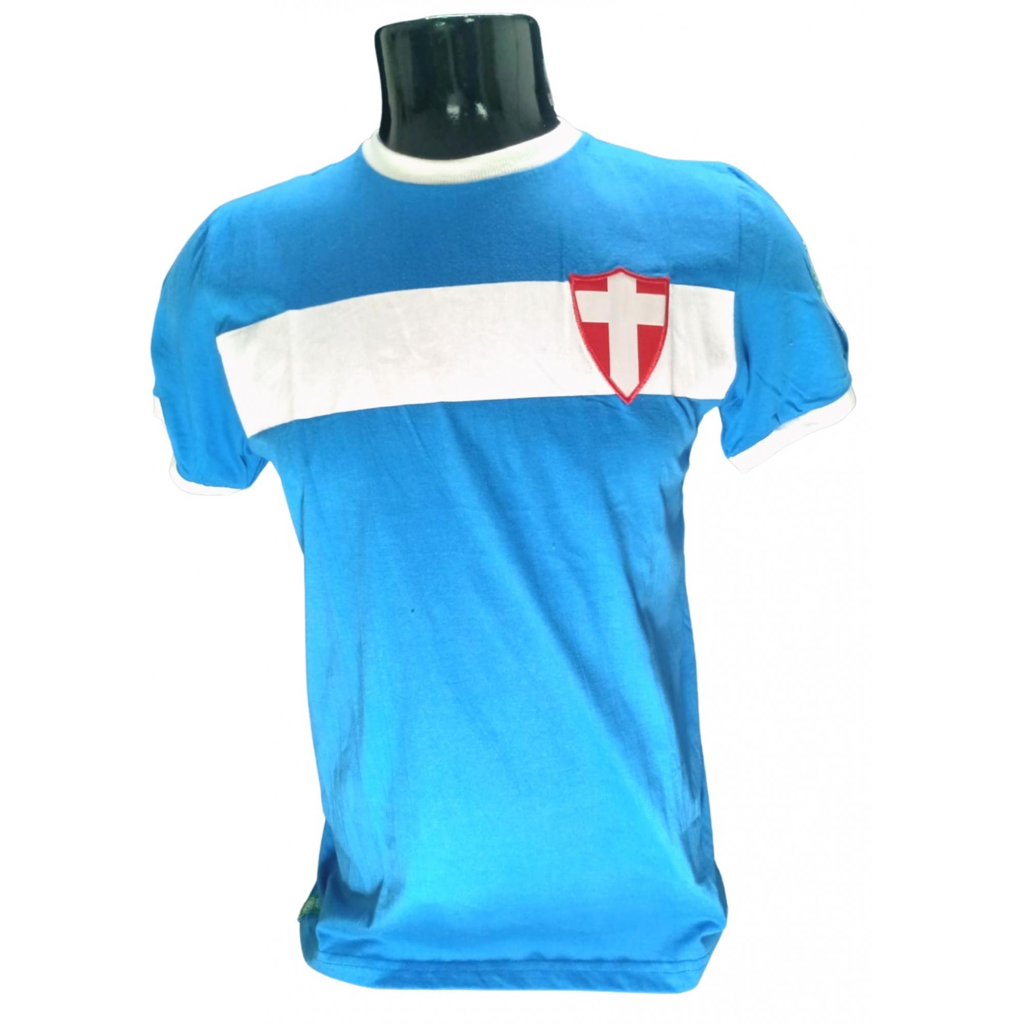 Camisa Palmeiras savoia