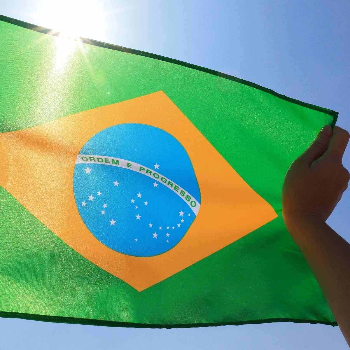 Bandeira do Brasil Tecido 30x40cm