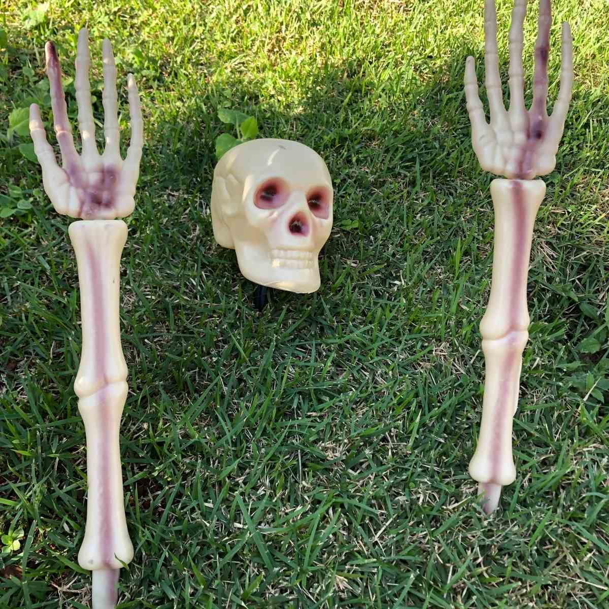 Enfeite Esqueleto para Jardim