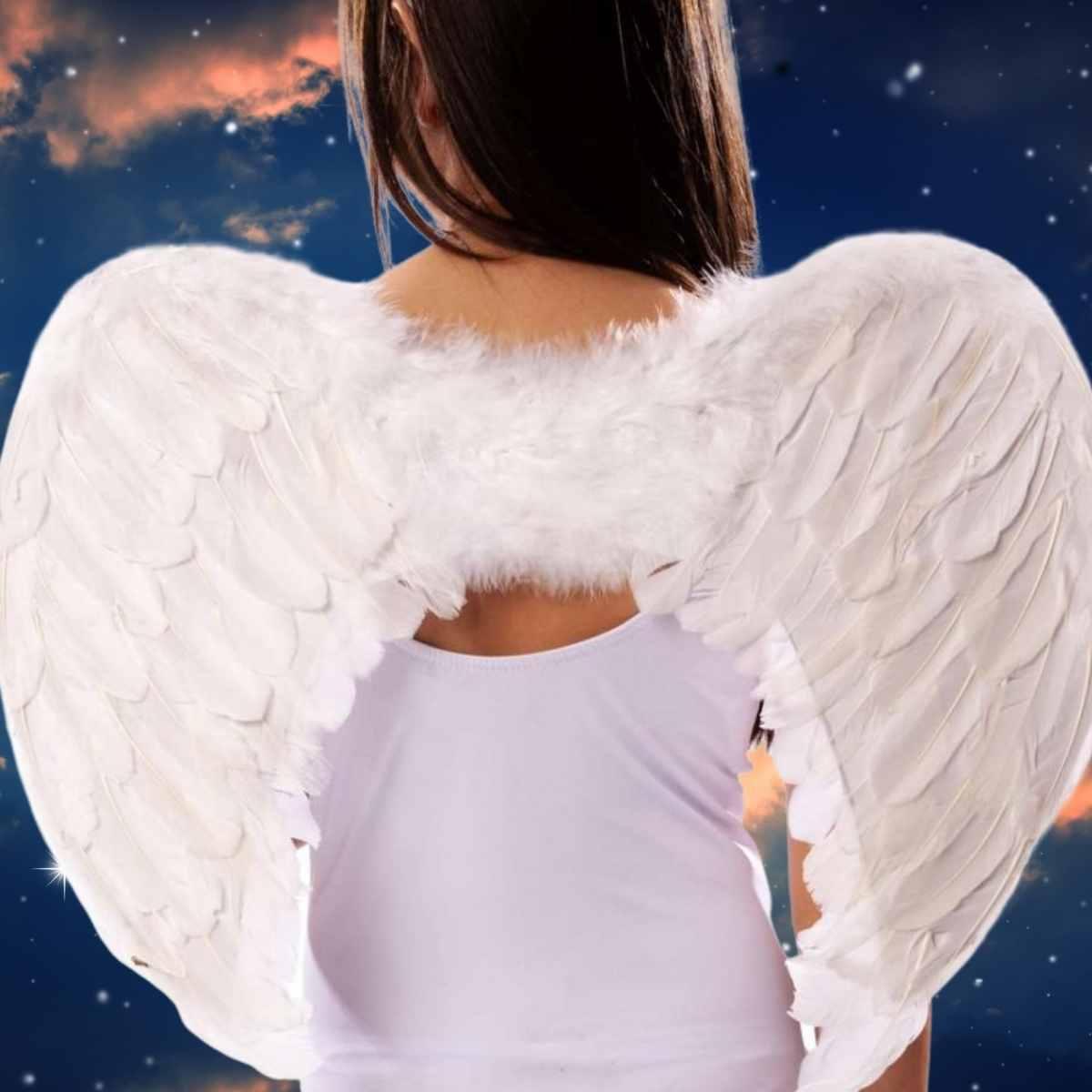 Kit Anjinha (Saia de Tule Branca Adulto + Suspensório Branco + Tiara Anjo com Aureola + Asa de Anjo Branca Pequena)