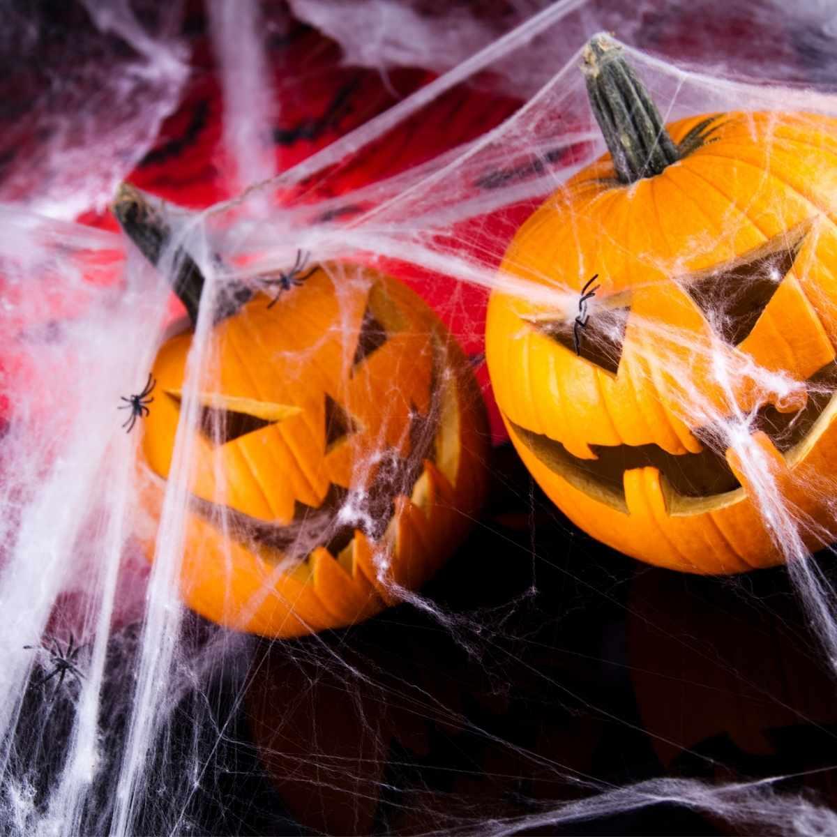 Teia de Aranha Branca para Halloween 20g