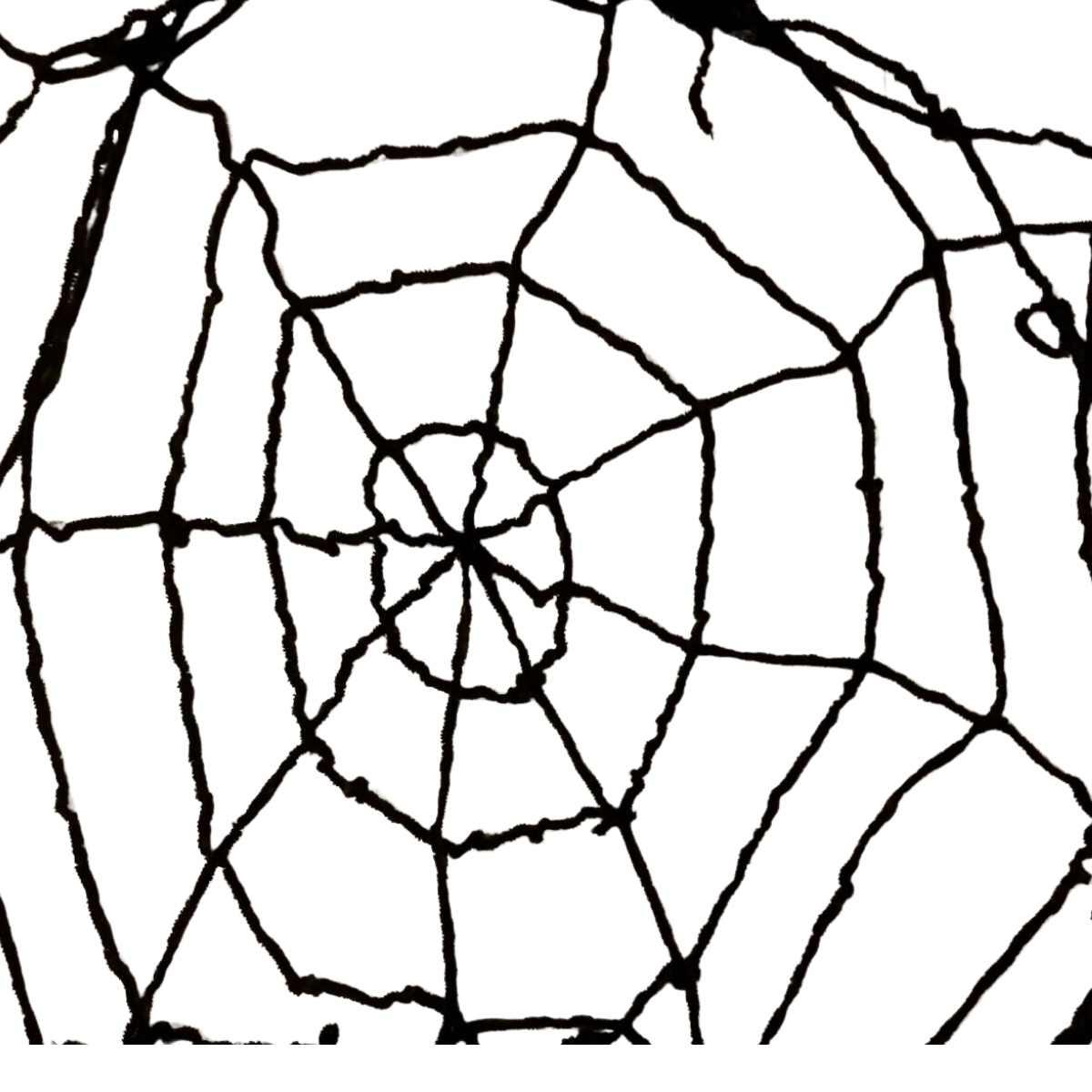 Teia de Aranha Gigante 2,4m