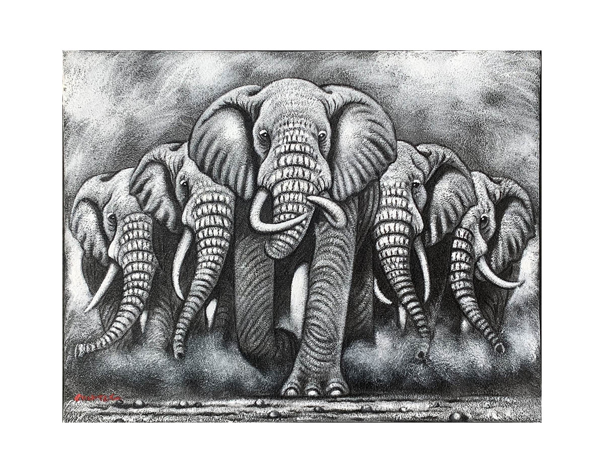 Quadro Elefante MP303-L 80x60CM