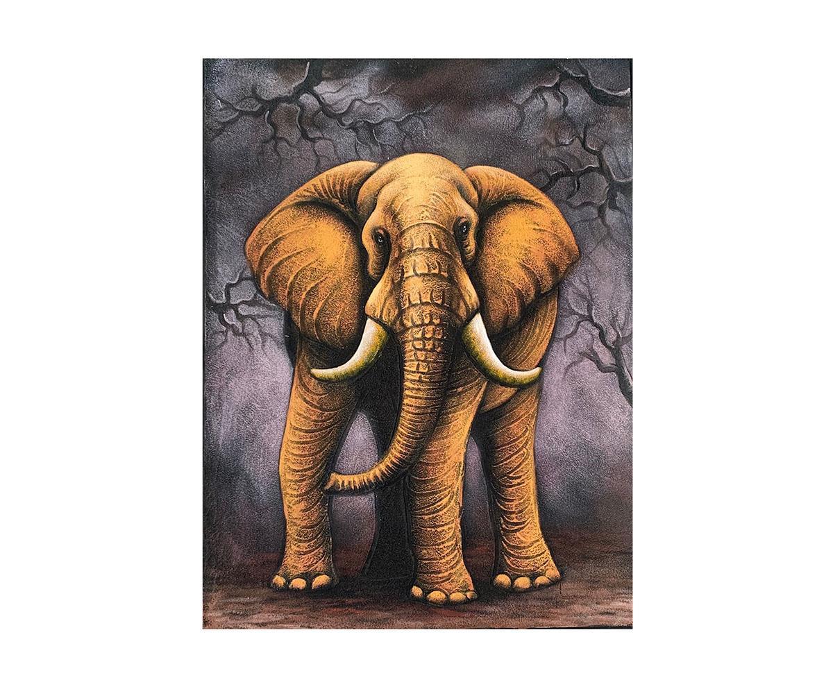 Quadro Elefante MP707 80x60CM
