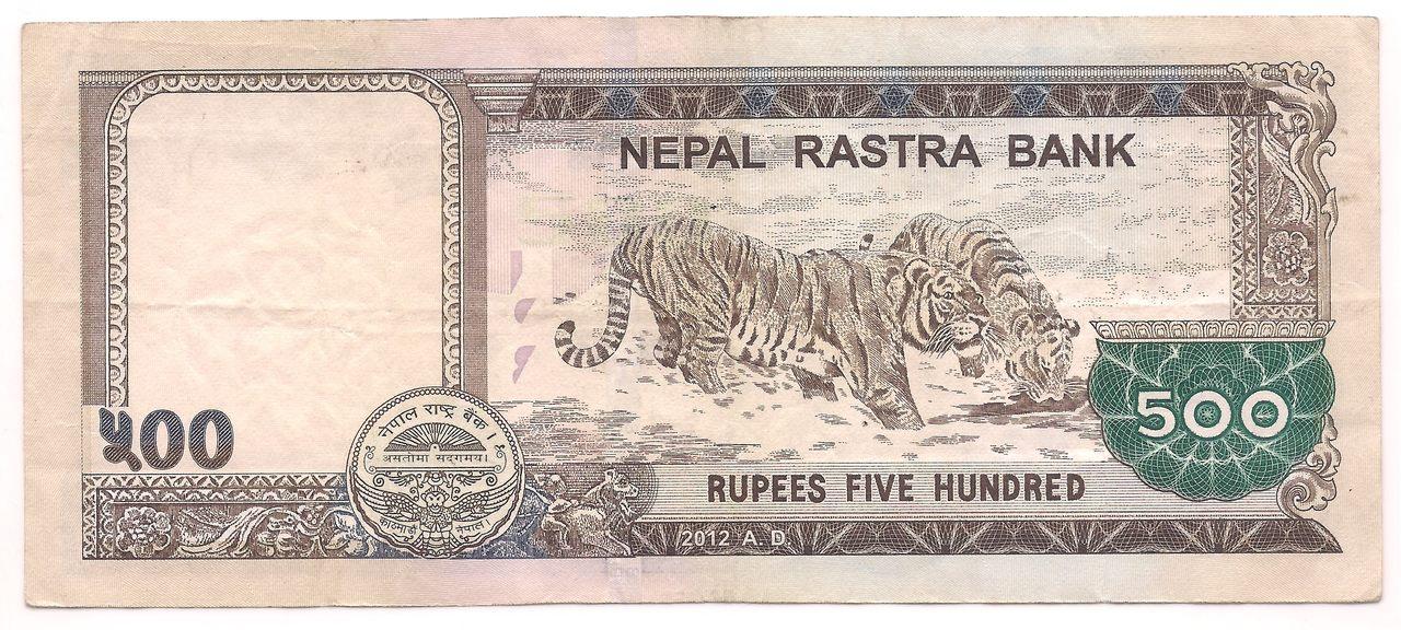 Nepal - 500 Rupees - (Tigres) 2012