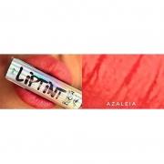 Mori Makeup Lip Tint Azaleia