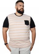 Camiseta Listrada Com Bolso XPlusSize