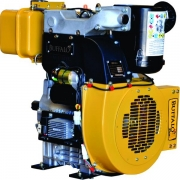 Motor Buffalo BFDE 22.0 PRO - Eixo P/ Bomba de Incêndio
