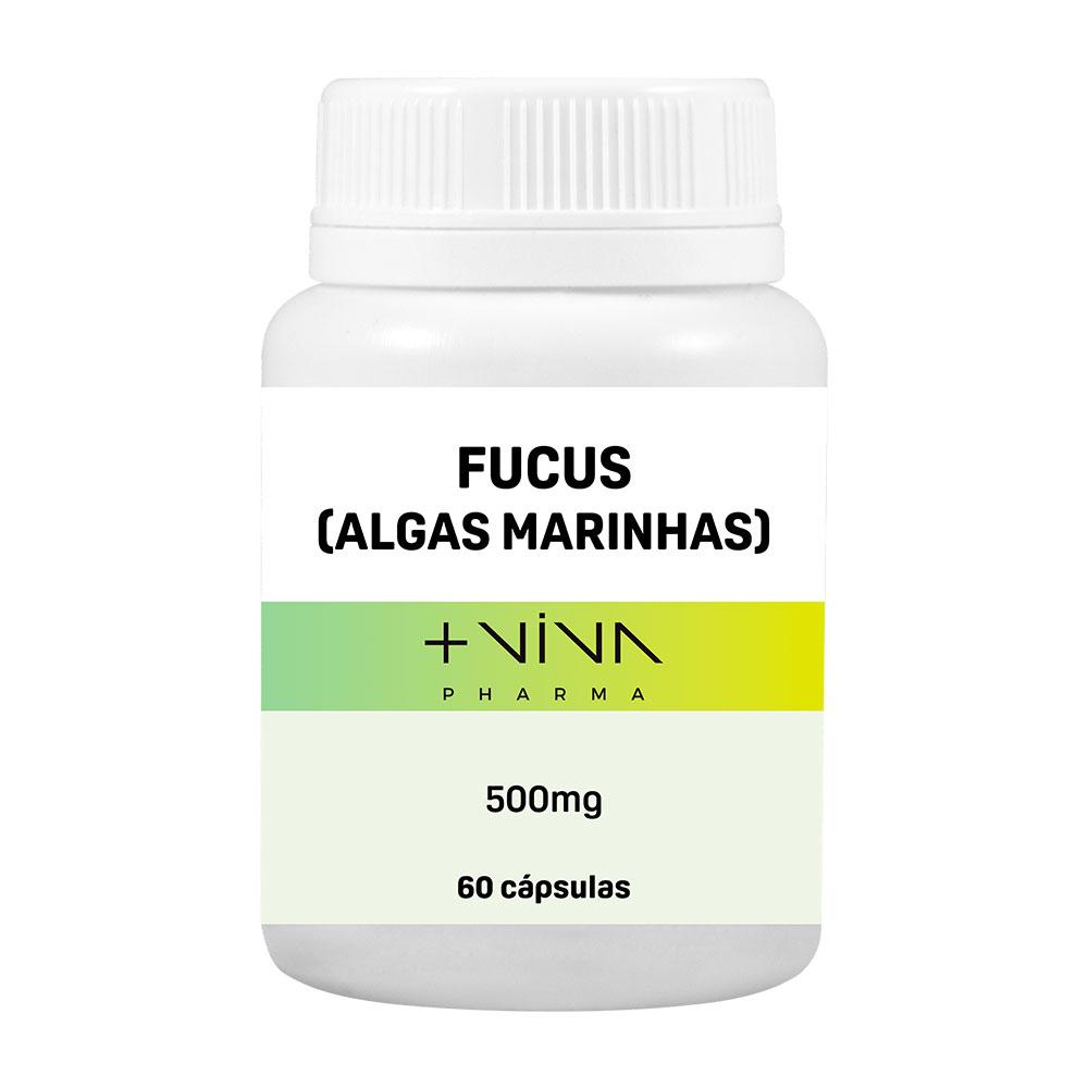 Fucus Algas Marinhas