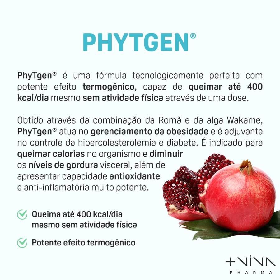 Phytgen 200mg 30 comprimidos mastigáveis