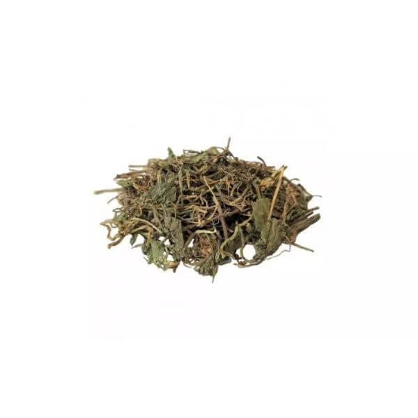 Chá de Centella Asiatica