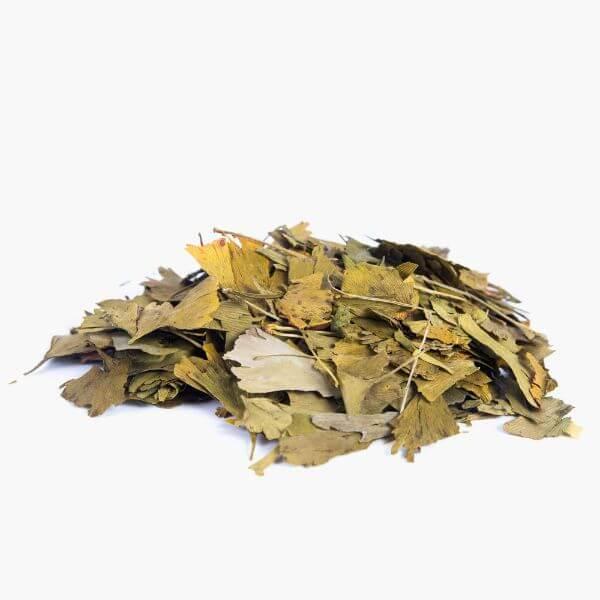Chá de Ginko Biloba