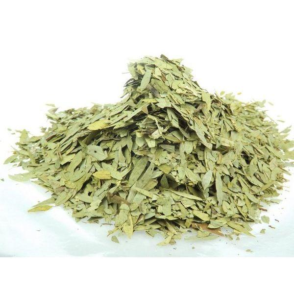 Chá de Sene Folhas