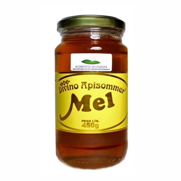Mel Silvestre Vidro 450gr - Divino Mel