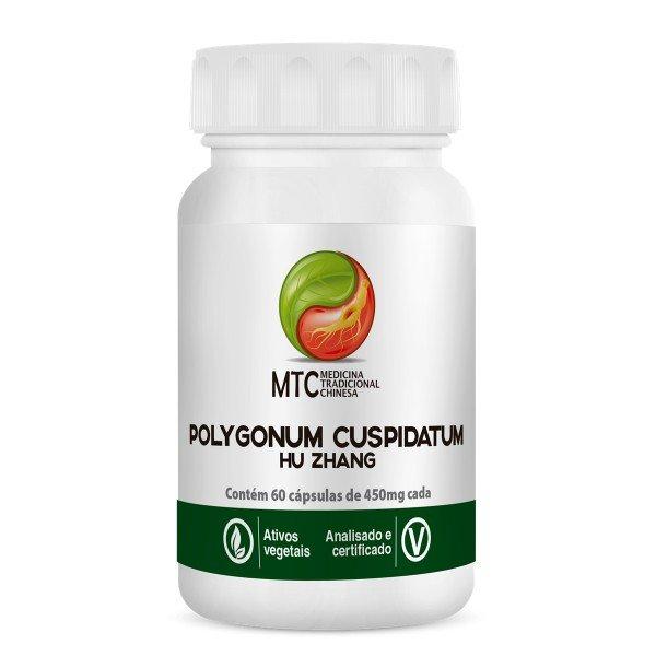 Polygonum Cuspidatum (hu Zhang) 60 Caps De 400mg - Vitafor