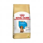 ROYAL CANIN DACHSHUND PUPPY 2,5KG