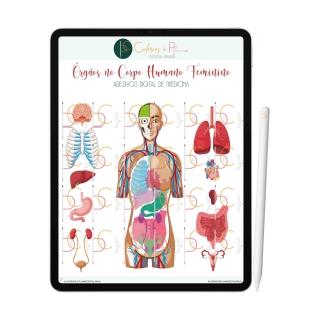 Adesivos Digital de Medicina - Órgãos no Corpo Humano Feminino   iPad Tablet   Download Instantâneo