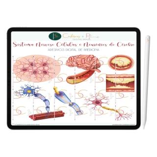 Adesivos Digital de Medicina - Sistema Nervoso Células e Neurônios do Cérebro  | iPad Tablet | Download Instantâneo