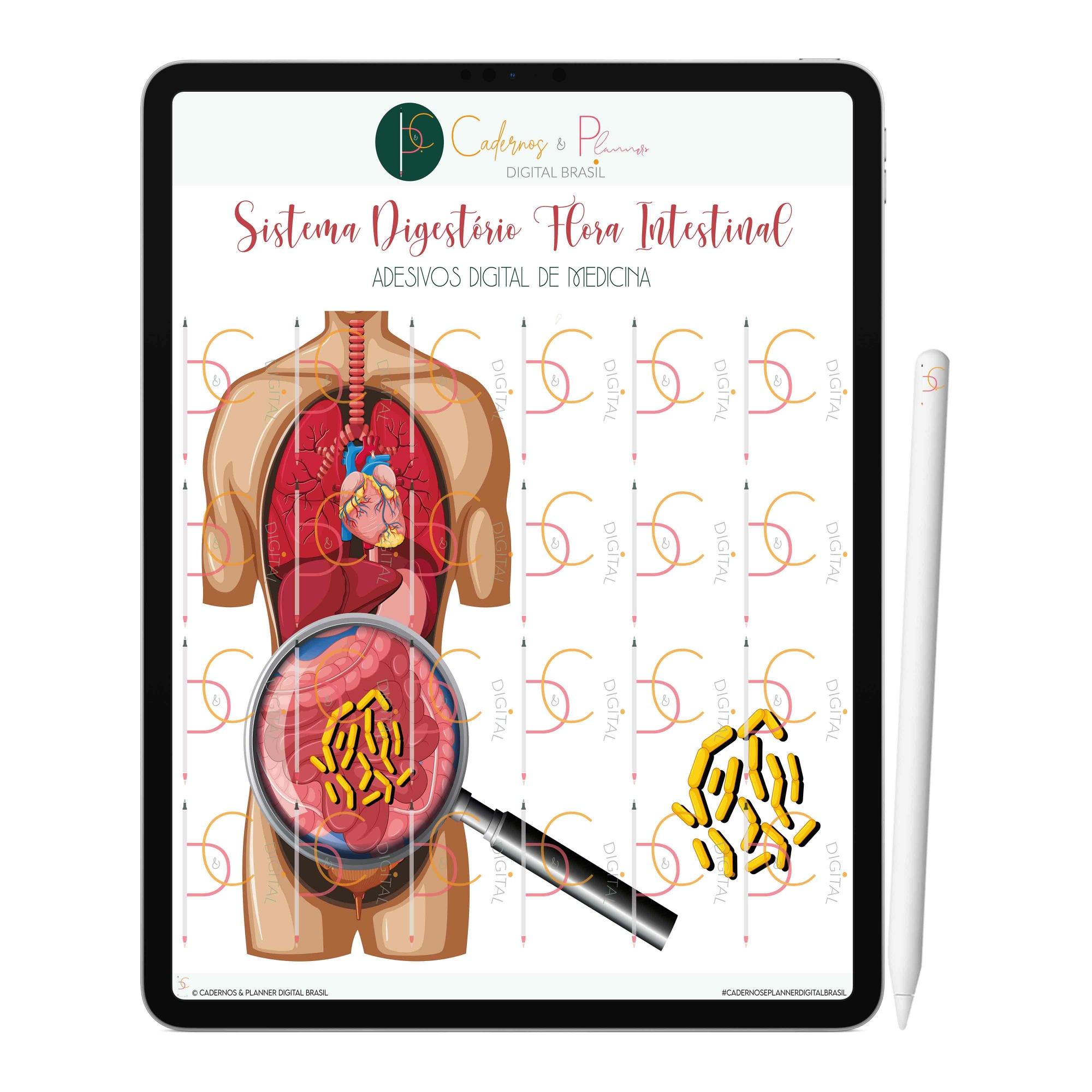Adesivos Digital de Medicina - Sistema Digestório | iPad Tablet | Download Instantâneo