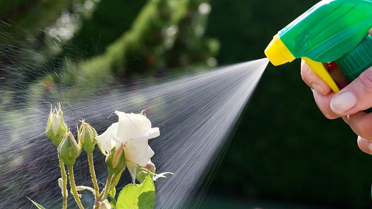 Fumo Liquido Repelente Para Plantas 500ml Quimiagri Jardinagem  - Ul Brasil