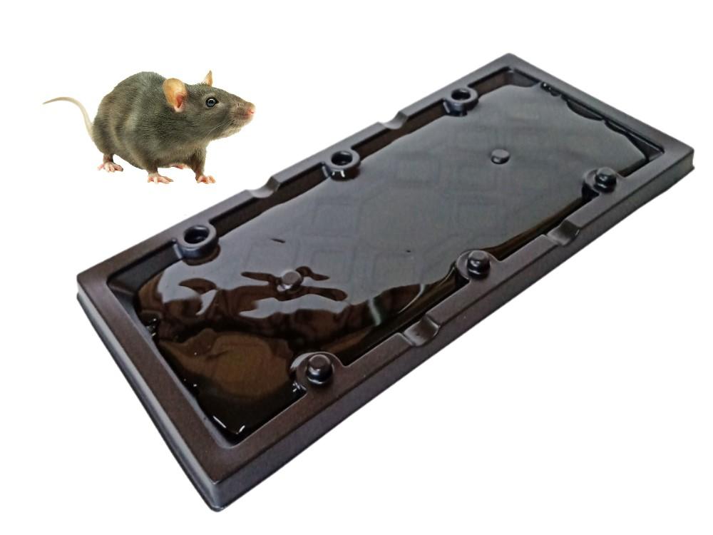 Ratoeira Armadilha Placa Adesiva Mata Ratos Pega Ratasanas  - Ul Brasil