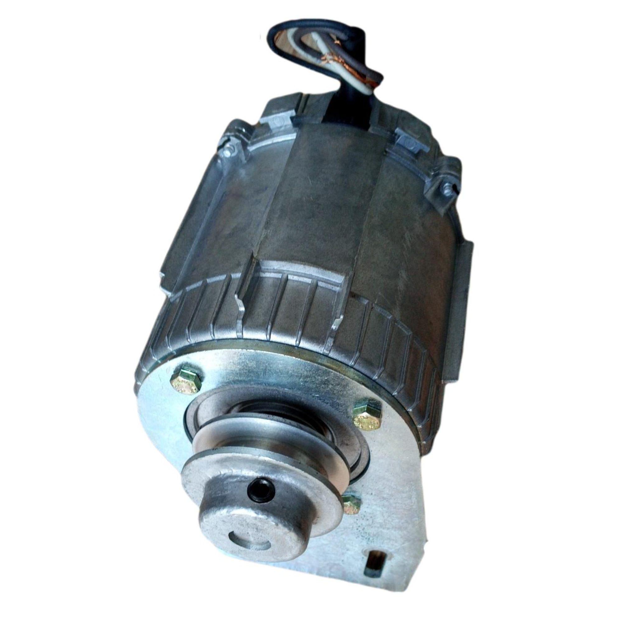 Motor Movimentador De Portão Original Weg 1/4hp 60hz 220v