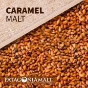 MALTE PATAGONIA CARAMEL 170L/340EBC