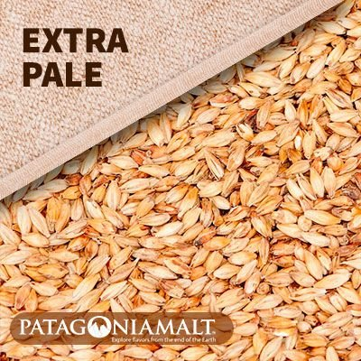 MALTE PATAGONIA EXTRA PALE