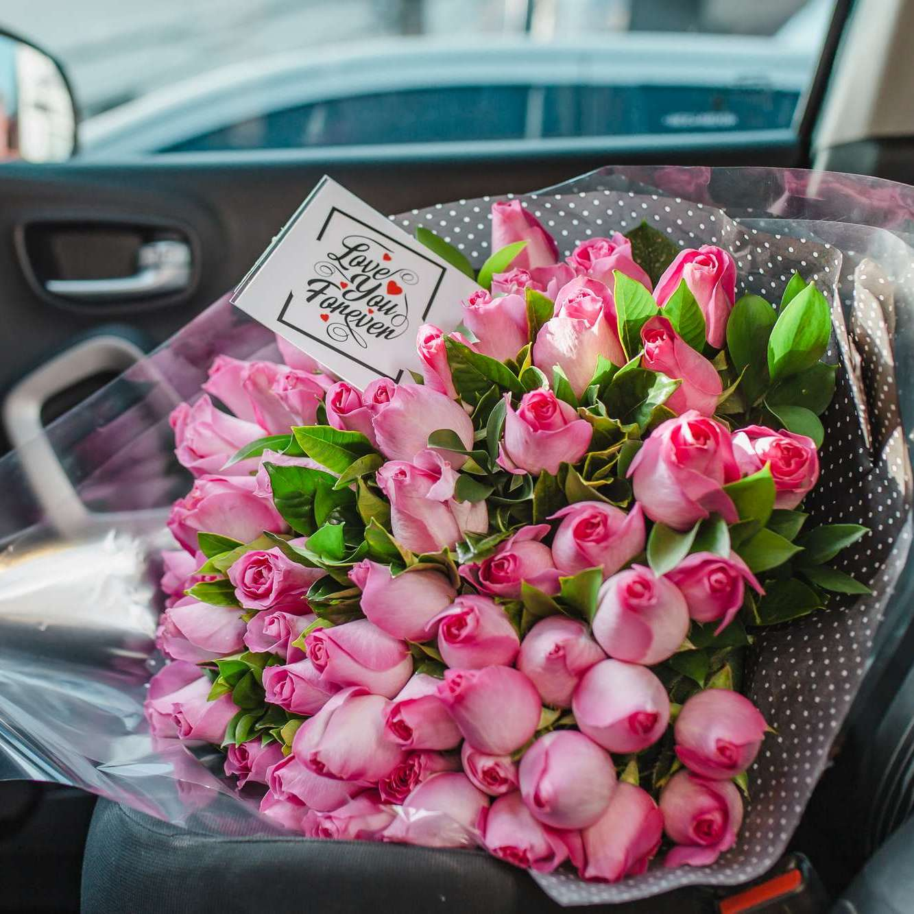 Buque Héstia 48 Rosas Nacionais