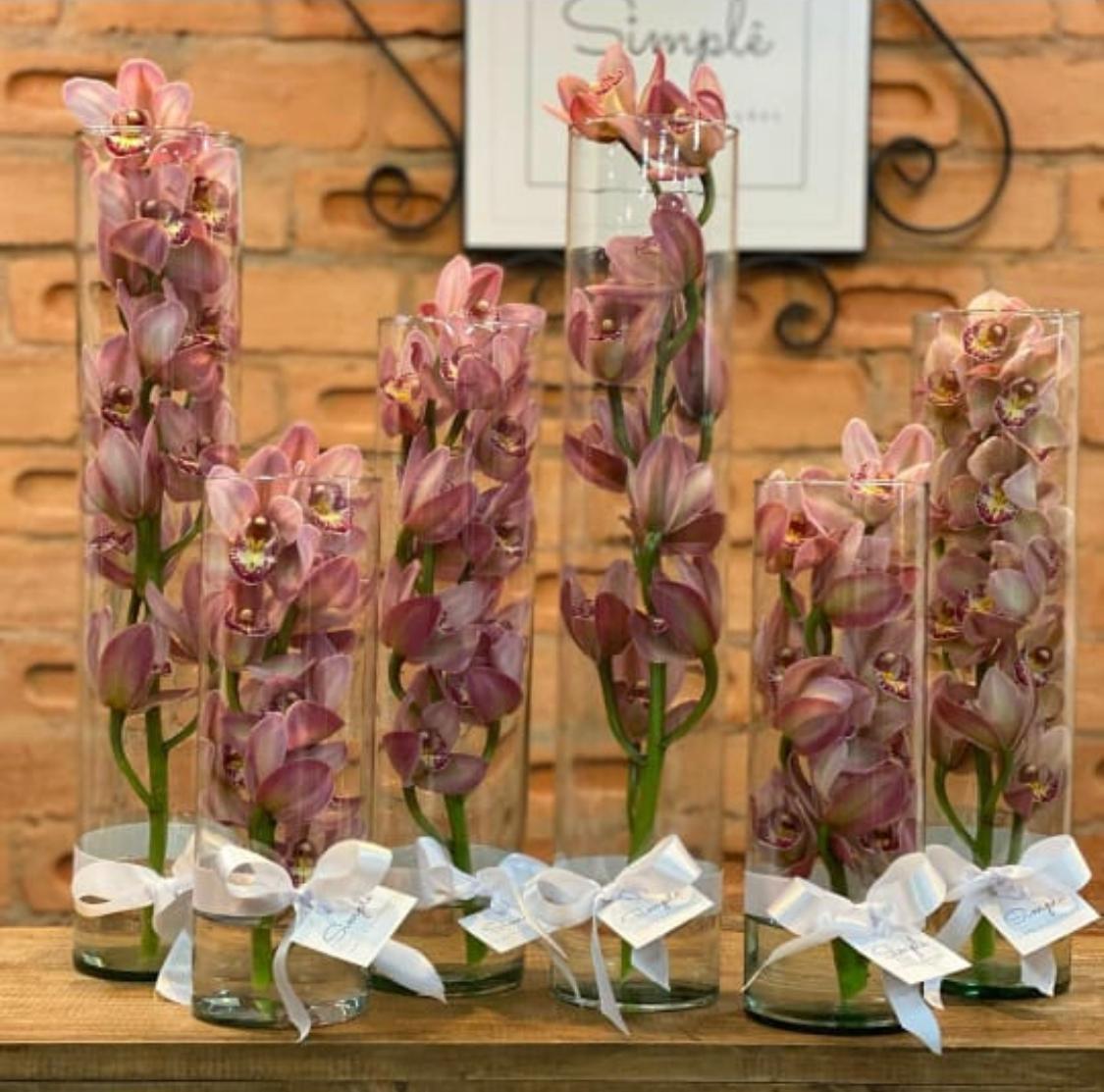Orquídea Luxo Tubo M