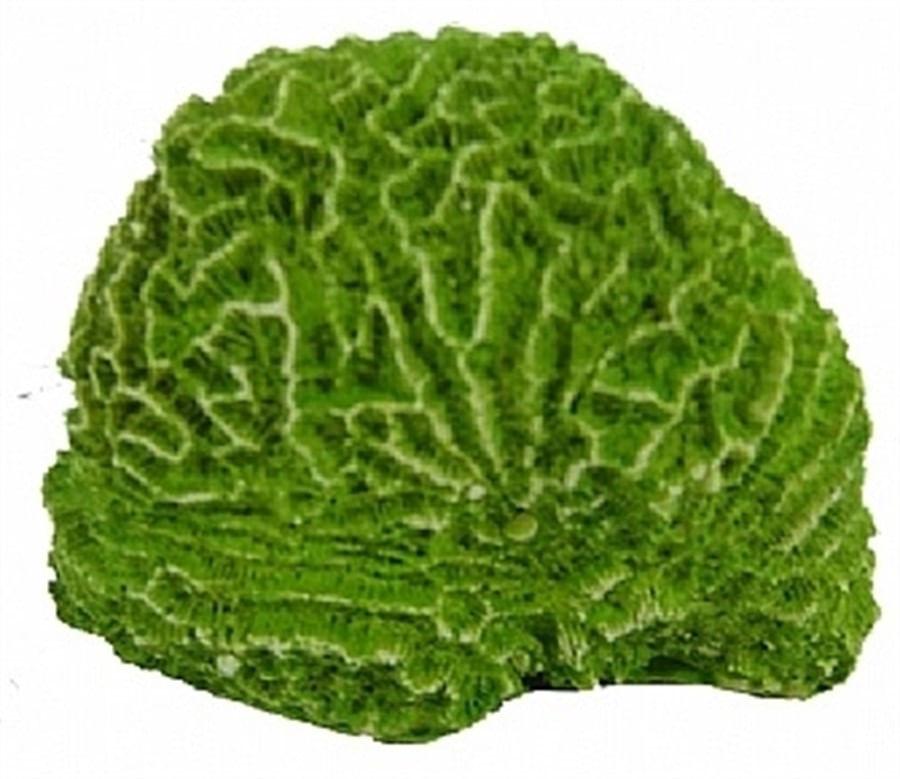 Aquária Enfeite de Resina Coral Cérebro (C-02)
