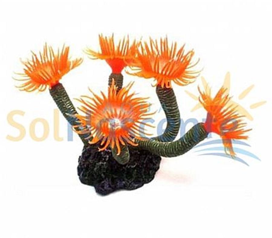 Artificial Coral Reef  Cerianthus Vermelho