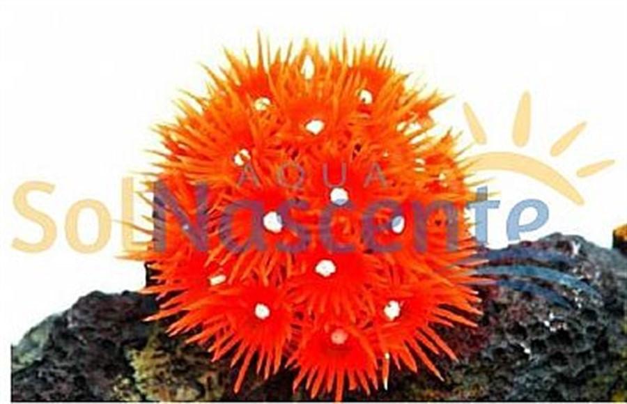 Artificial Coral Reef Goniopora Vermelha(Enfeite de Silicone e Resina)