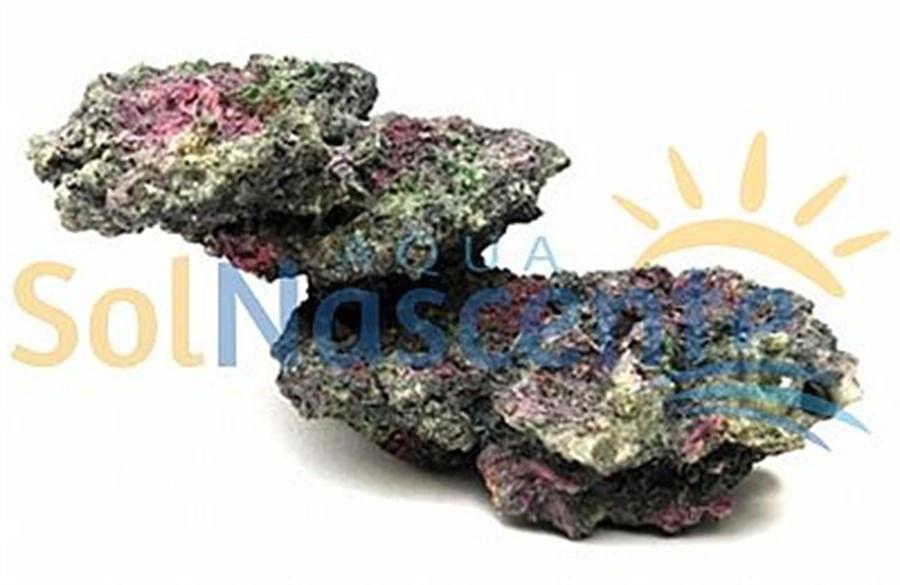 Artificial Coral Reef Modelo A3